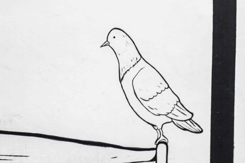 pigeonhole (13 of 15)
